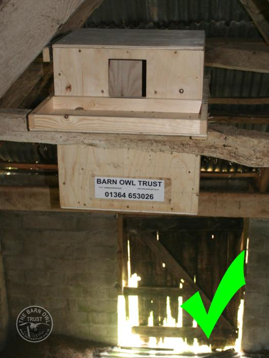 Good Nestbox Design Indoor Deep Box