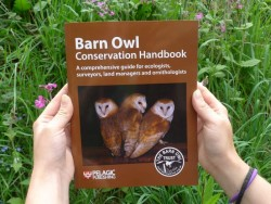 Projects Barn Owl Conservation Handbook