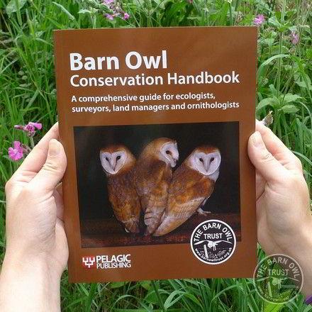 Barn Owl Conservation Handbook - The Barn Owl Trust