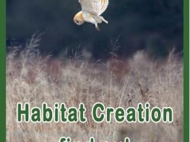 Sidebar 2 Habitat Creation