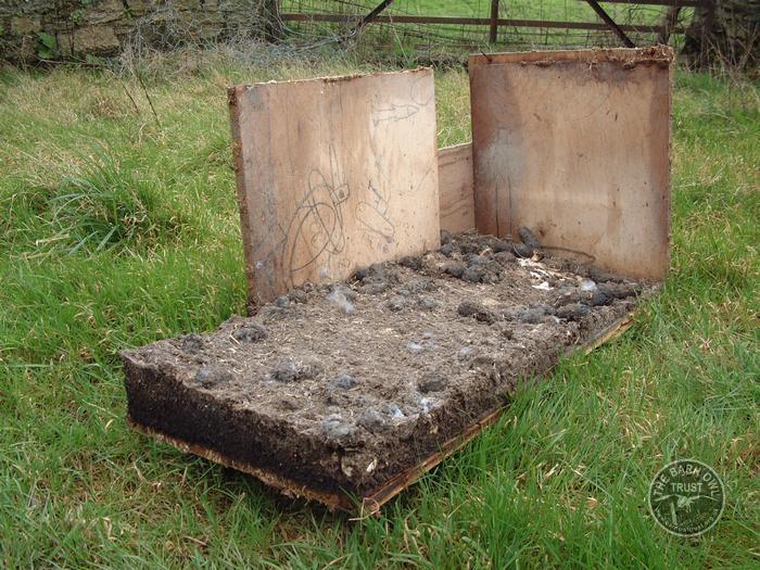 Signs of Barn Owl occupation - The Barn Owl Trust
