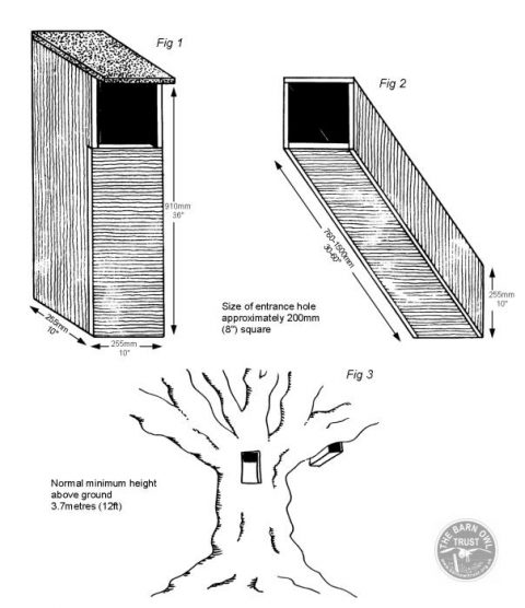 Tawny Owl Nestboxes Diagram