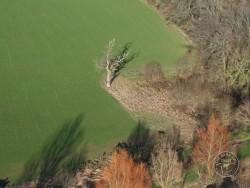 Barn Owl boxes for trees - The Barn Owl Trust