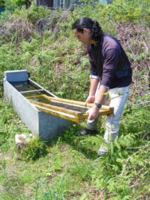 Water trough installing owl drowning prevention device1