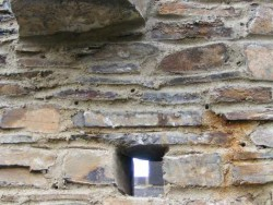 Wildlife Tower Features Provisions Little Owl Access