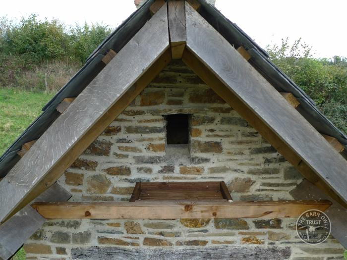 How To Build A Wildlife Tower The Barn Owl Trust
