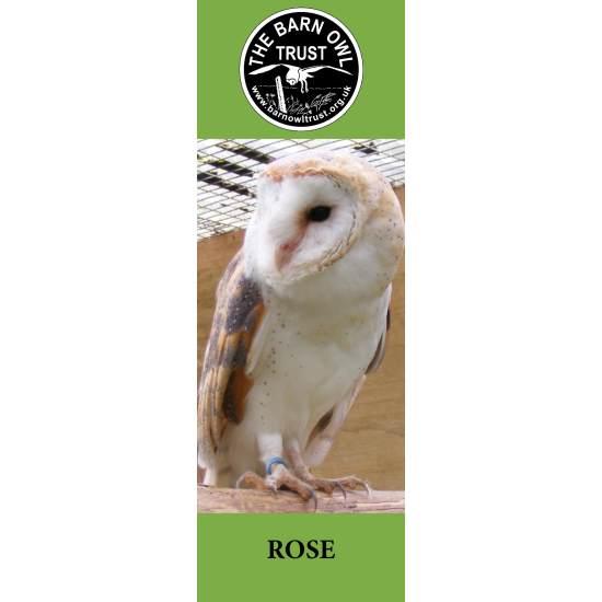 Barn Owl Trust Bookmark Rose The Barn Owl Trust