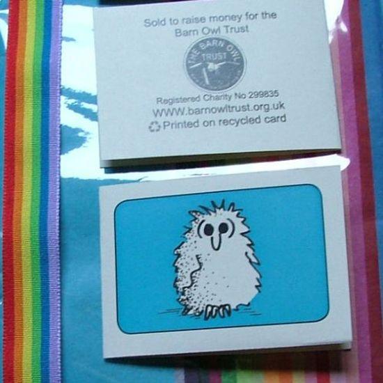 Barn Owl Trust Gift Wrap Pack 2
