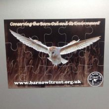 Barn Owl Trust Magnetic Puzzle