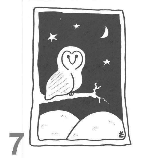 Barn Owl Trust Night Owl A6 Black & White Card