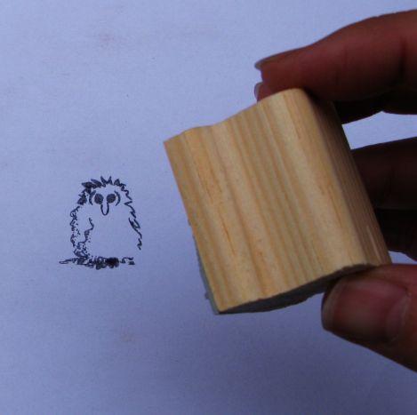 Barn Owl Trust Owlet Impression