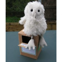 Owl Toys & Gift Ideas