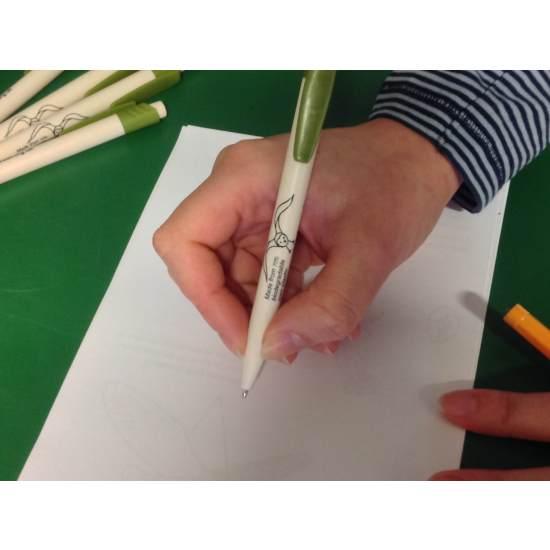 Barn Owl Trust Pen In Use