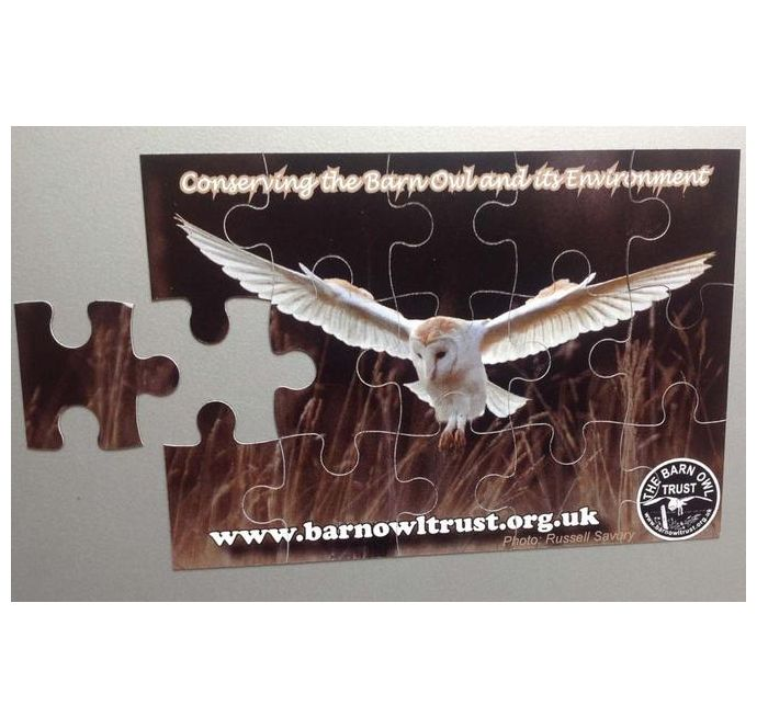 Barn Owl Trust Puzzle With Loose Piece