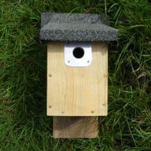 Barn Owl Trust Small Bird Nest Box