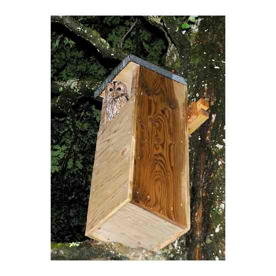 Tawny Owl box - Quality nestboxes from The Barn Owl Trust