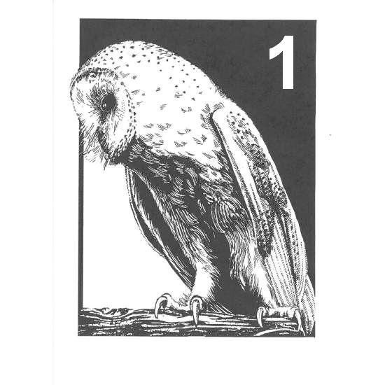 Barn Owl Trust The Barn Owl A6 Black White Card1