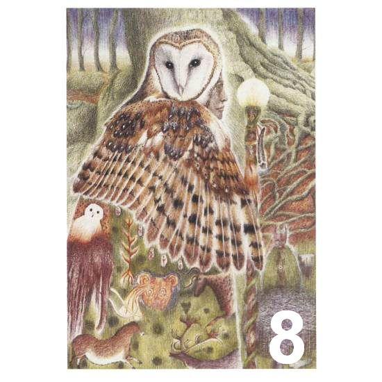 Barn Owl Trust The Seer A6 Card