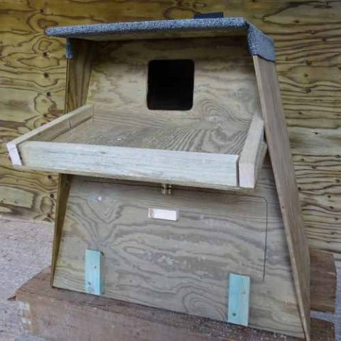 Barn Owl Trust Tree Nest Box Front