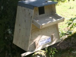 Barn Owl Tree Nestbox