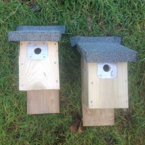 Barn Owl Trust Two Small Bird NestBoxes