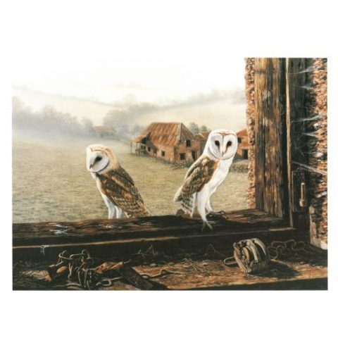 Barn Owl Trust Welcome Return Poster