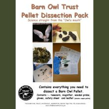 Barn Owl Trust Pellet Dissection Pack Front Cover