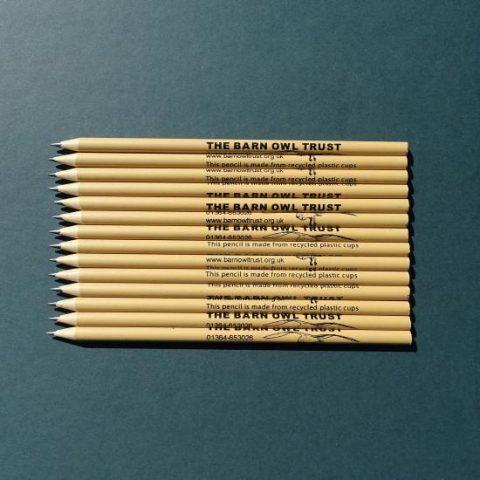 Barn Owl Trust Recycled Plastic Pencils