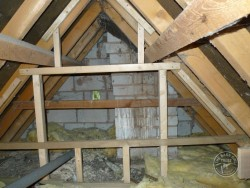 Barn Owl Loft Partition Construction 03