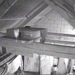 Barn Owl Webcam Barncam Screenshot 29th May 2018