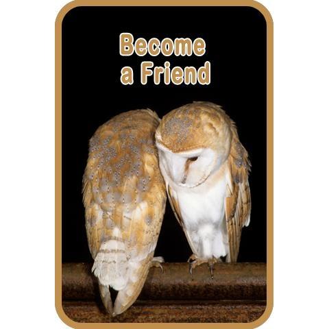 Become A Friend
