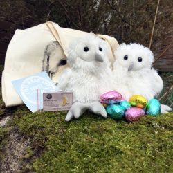 Easter Family Pack For Website