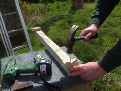 Erecting A Barn Owl Treebox 02