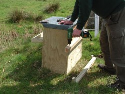Erecting A Barn Owl Treebox 03
