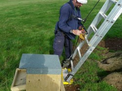 Erecting A Barn Owl Treebox 11