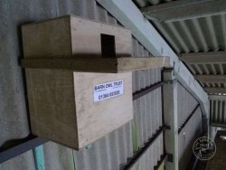 Good Barn Owl Nestbox Design 12