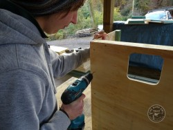 Indoor Barn Owl Nestbox Construction 05