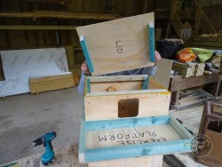 Indoor Barn Owl Nestbox Construction 16
