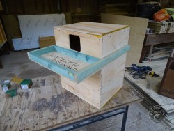 Indoor Barn Owl Nestbox Construction 18