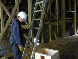 Indoor Barn Owl Nestbox Erection 04