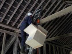 Indoor Barn Owl Nestbox Erection 06