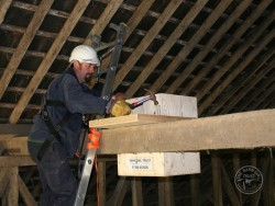 Indoor Barn Owl Nestbox Erection 07