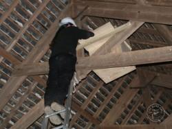 Indoor Barn Owl Nestbox Erection 09