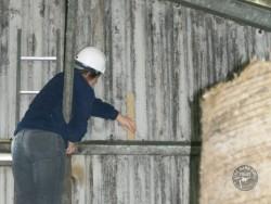 Indoor Barn Owl Nestbox Erection 11