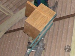 Indoor Barn Owl Nestbox Erection 14