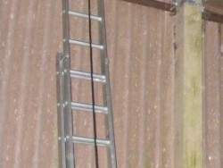 Indoor Barn Owl Nestbox Erection 15