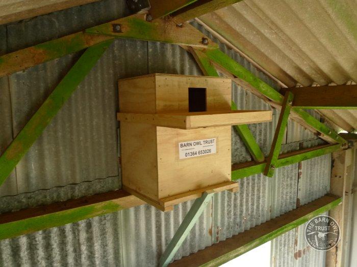 Barn Owl nestbox for buildings - The Barn Owl Trust