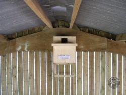 Indoor Barn Owl Nestbox Erection 27