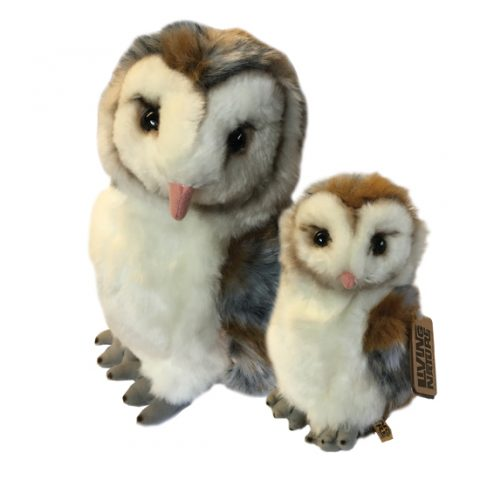 Large And Small Owl