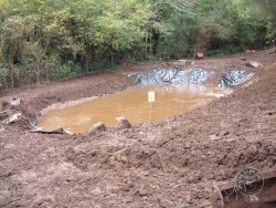 LLP Wildlife Pond Creation 07